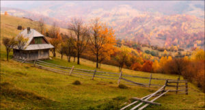 Відпочинок в Карпатах восени
