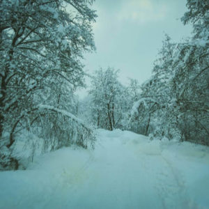 tirol_winter_002